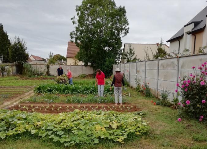 Jardins partages 5